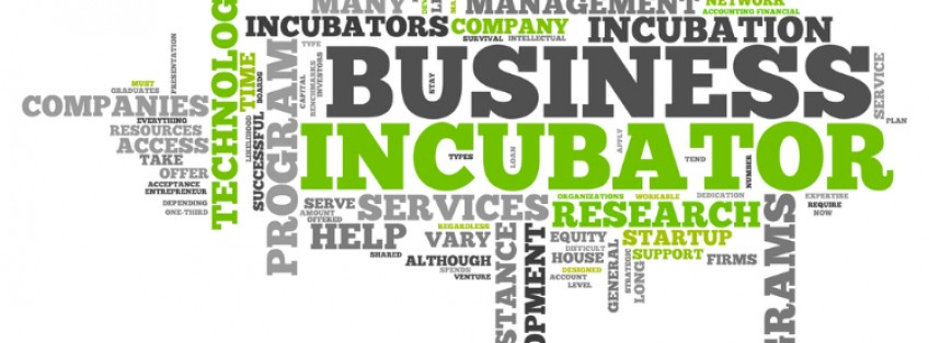 Business Incubators: Legal regime and financial aids